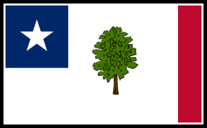 Mississippi State Flag Adopted Shortly After Secession, 1861