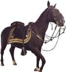 Sheridan's horse